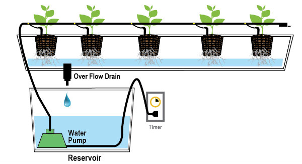 Types of hydroponics systems a complete guide the for Indoor gardening market size