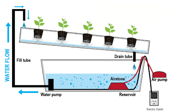 hydroponic systems How to build a homemade hydroponic system with pvc pipes diy hydroponic systems pvc pipe & vertical pvc hydroponic gardening made easy.