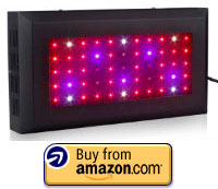 There are some fantastic LED lights available on the market but my preferred option will always be the TaoTronic grow light. They come in either a funky ...  sc 1 st  The Hydroponics Grower & The Mammoth Guide to Growing Hydroponic Tomatoes | The Hydroponics ...